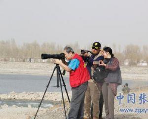 候鸟来湿地烟花映,采风正当时:摄影师齐聚高台黑河湿地摄影采风